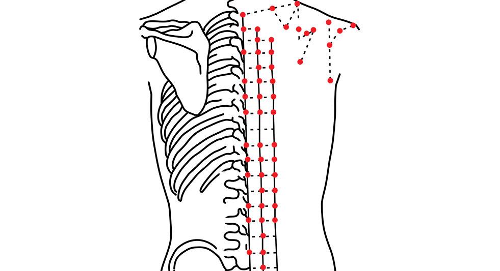 Principes de la biokinergie : les points d'acupuncture | Fadila Ouzlifi